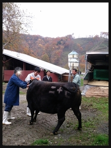 2014-10-21-18-53-26_deco.jpg
